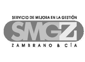 logo_SMGZ_gris